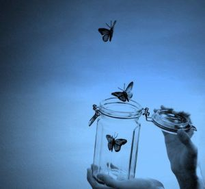 Butterfly can